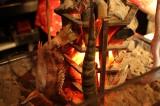 炭火炉端焼き