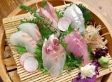 北海道・新潟・石川・築地など各地からの鮮魚